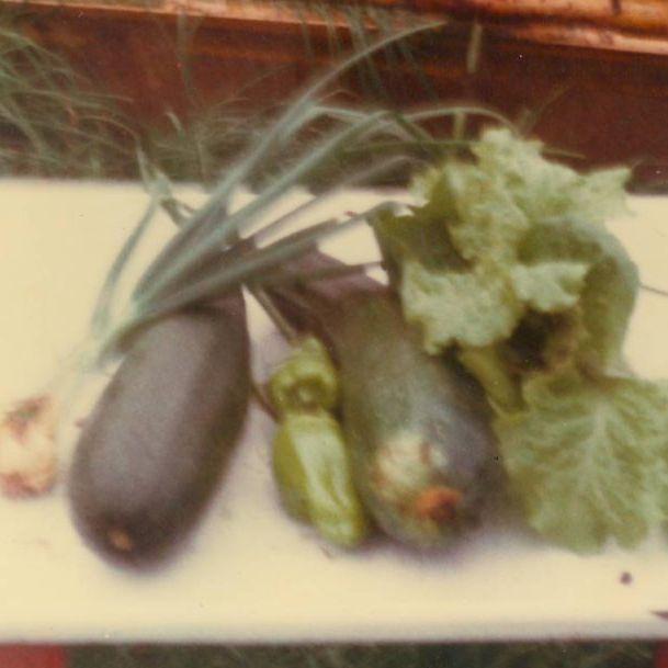 """vegetables"""""""